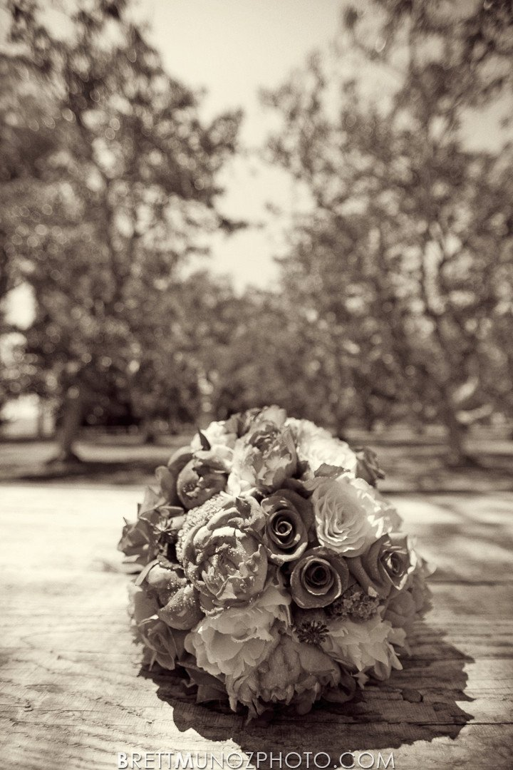 walnut-grove-wedding-001