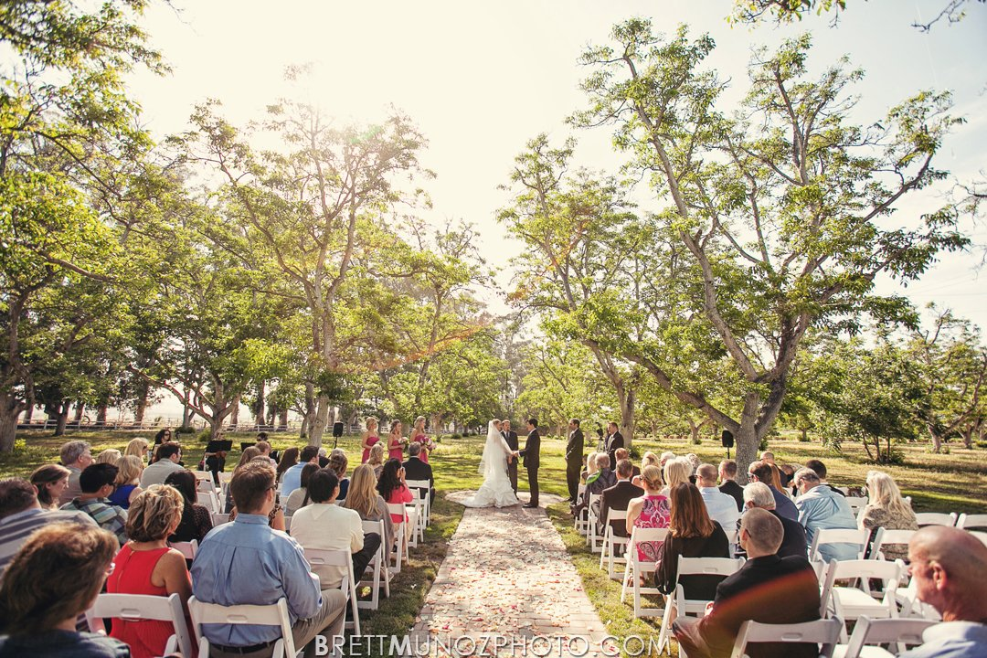 walnut-grove-wedding-025